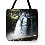 Ironhead Falls Tote Bag