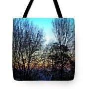Irreplaceable Beauty Tote Bag