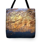 Irresistable Beauty Tote Bag