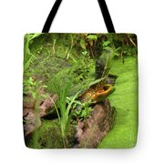 Is Green In Tote Bag