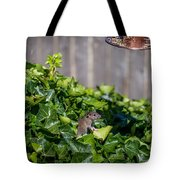 Is It Clear? Tote Bag