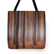 Is There Anybody In There? Tote Bag