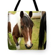 Is This My Best Side? Tote Bag