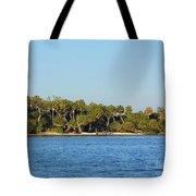 Island Off Of Cedar Key Tote Bag