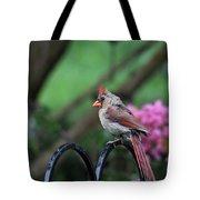 Isn't She Lovely Tote Bag