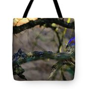 Isolated Blue Bird Tote Bag