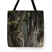 Israel, Tree Trunk Tote Bag