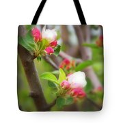It Is Spring Time In The Annapolis Valley Tote Bag