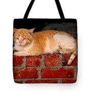 It Is That Simple It's My Wall My Place Tote Bag