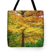 It You've Got It, Flaunt It Tote Bag