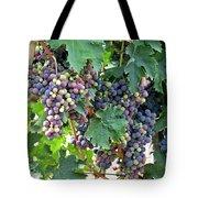 Italian Grapes Tote Bag