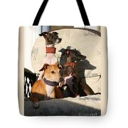 Italian Greyhounds Tote Bag