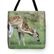 Itchy Fawn Tote Bag
