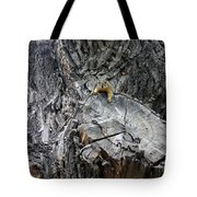 It's A Big World Tote Bag