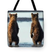 It's A Big World Out There Tote Bag