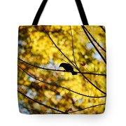 It's A Bird Tote Bag