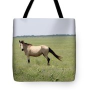 It's A Horse Of  Course Tote Bag