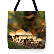 It's A Small World Mushrooms Tote Bag by Jennie Marie Schell