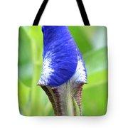 It's A Wrap - Iris Bud Tote Bag