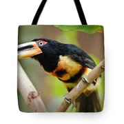 It's All About The Beak Tote Bag