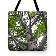It's All Limbs Tote Bag