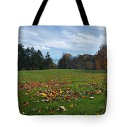 It's Amazing Out There Tote Bag