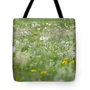 It's Dandelion Time Tote Bag