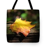 Its Fall Tote Bag