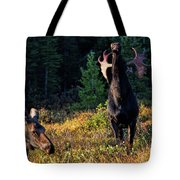 It's So Good To Be King Tote Bag