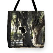 It's Knot A Hole Tote Bag