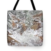 It's Mid May. We're Fast Approaching The End Of Our Snow Season.  Tote Bag