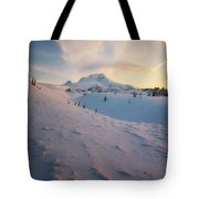 It's Not Spring Yet Tote Bag