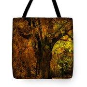It's Not The Angel Oak Tote Bag