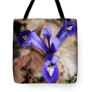 It's Spring 2010 Tote Bag