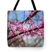 It's Spring 2016 Tote Bag