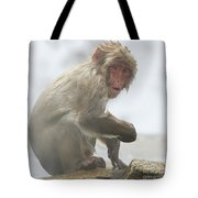 It's Way Too Cold Tote Bag