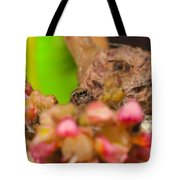 Itsy Bitsy Spider Over Mango  Tree Flowers Tote Bag