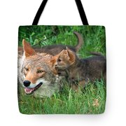 I've Got A Secret Tote Bag