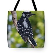 I've Got Your Back - Female Downy Woodpecker Tote Bag