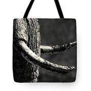 Ivory And Mud Tote Bag