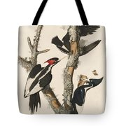 Ivory-billed Woodpecker Tote Bag