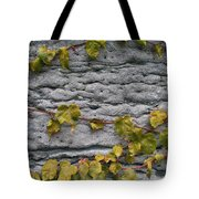 Ivy And Ancient Wall In Old Montreal Hd Photography Tote Bag