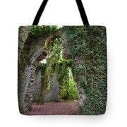 Ivy Clad Ruin Tote Bag