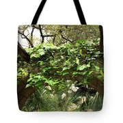 Ivy-covered Arch At The Alamo Tote Bag