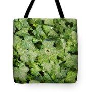 Ivy Green Tote Bag