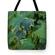 Ivy Greens Tote Bag