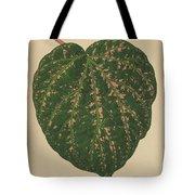 Ivy Leaf, Cissus Porphyrophyllus  Tote Bag