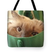 Jack In The Bag Tote Bag
