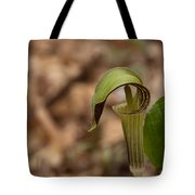 Jack In The Pulpit Tote Bag