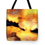 Jack O Lantern Mushrooms Tote Bag
